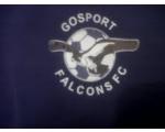 Gosport Falcons Black FC U12's