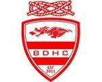 BDHC - The Dragons...