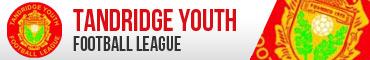 Tandridge Youth Football League